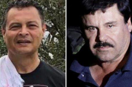 Con cría de avestruces en Colombia se habría lavado plata de mafia mexicana